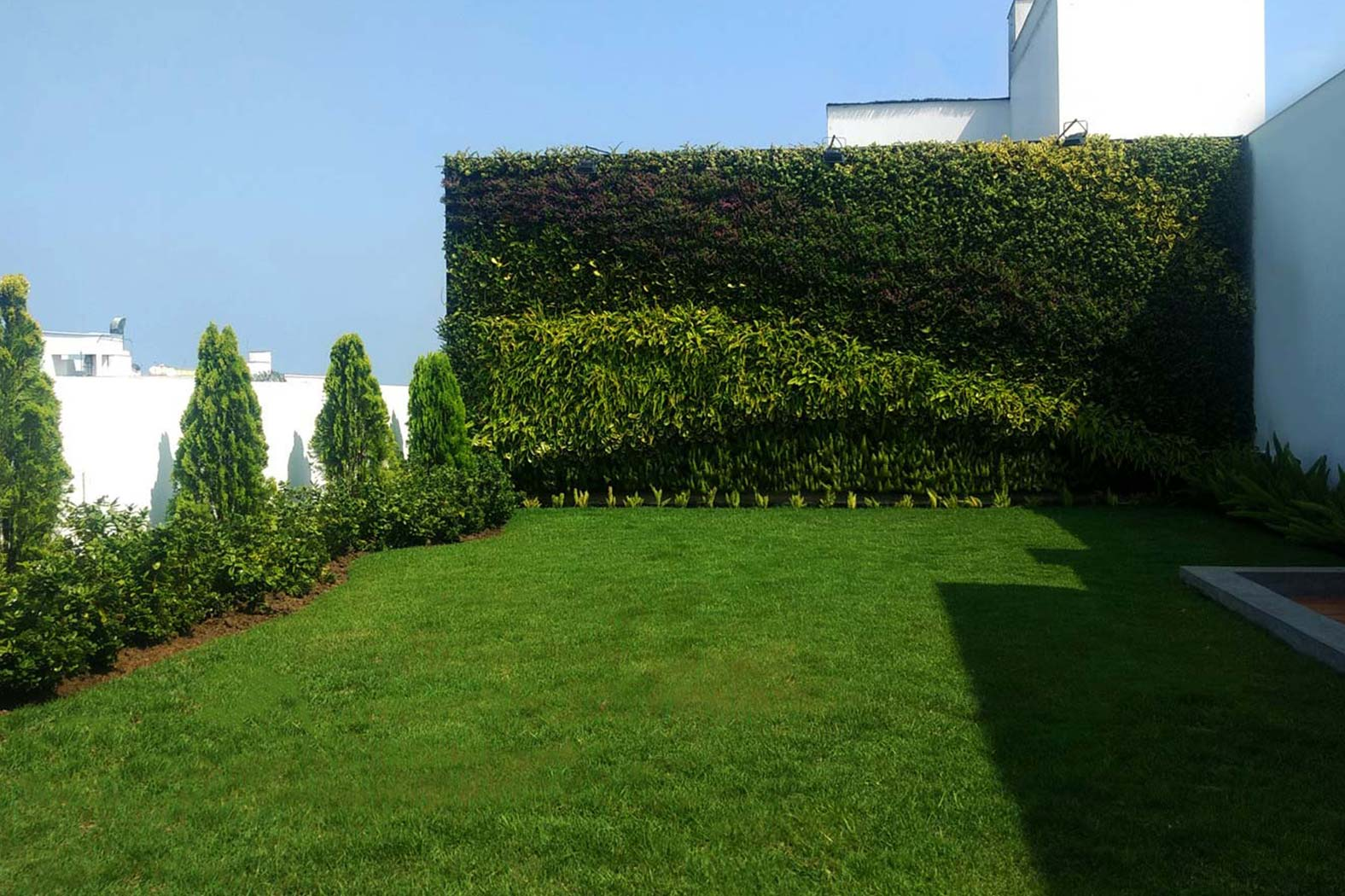 Proyectos jard n vertical jardines verticales Techos verdes y jardines verticales